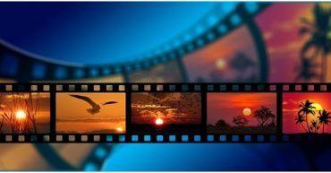 PAGINAS Video stock 2020